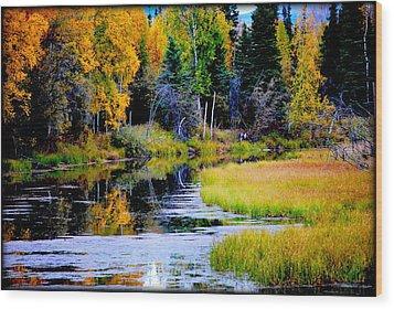 Moose Country Wood Print