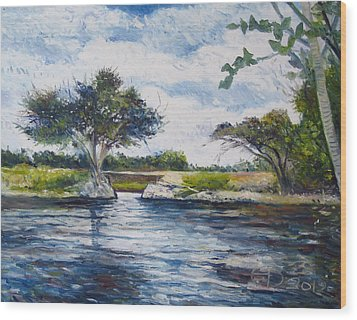 Mopani Bridge Maun Botswana Wood Print by Enver Larney