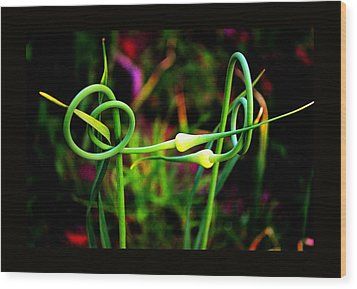 Wood Print featuring the photograph More Divine Garlic by Susanne Still