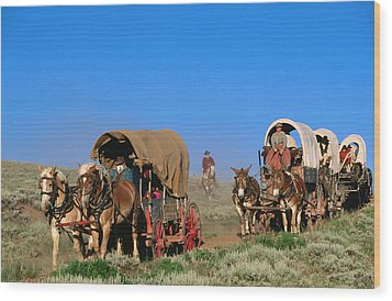Mormons On Horse Carriages, Mormon Pioneer Wagon Train To Utah, Near South Pass, Wyoming, United States Of America, North America Wood Print by Holger Leue