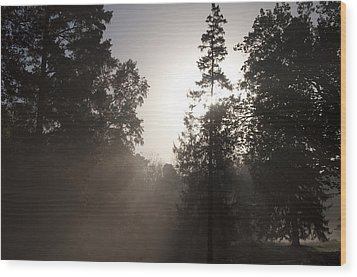 Morning At Valley Forge Wood Print by Bill Cannon