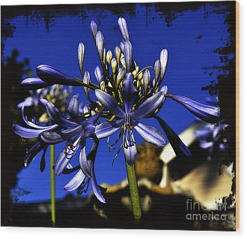 Morning Blooms Wood Print by Clayton Bruster