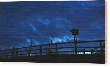 Morning Blues Wood Print by Deb Martin-Webster
