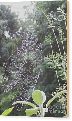 Morning Dew Wood Print by Michelle Welles