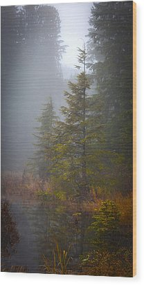 Morning Fall Colors Wood Print by Mike Reid