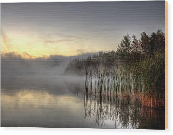 Morning Fog With A Loon Wood Print by Gary Smith