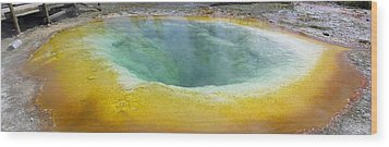 Morning Glory Pool, Yellowstone Wood Print by Tony Craddock