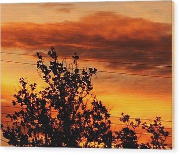 Morning In Silhouette Wood Print by Denise Workheiser