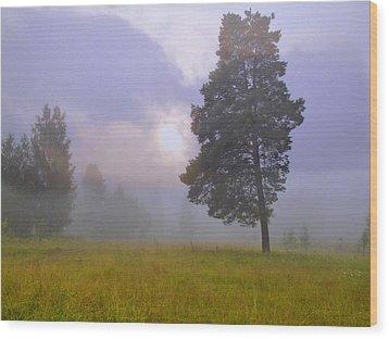 Morning Ligut-3 Wood Print by Vladimir Kholostykh
