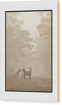 Wood Print featuring the photograph Morning Meeting by Brian Duram