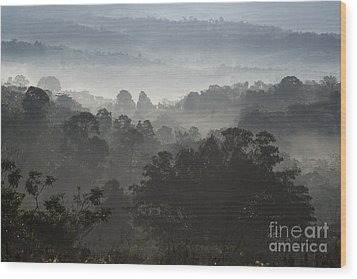 Morning Mist In Panama's Highlands Wood Print by Heiko Koehrer-Wagner