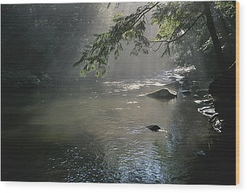Morning Mist Lifts Off The Tellico Wood Print by Stephen Alvarez