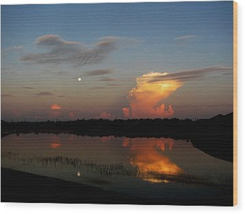 Wood Print featuring the photograph Morning Moon by Bill Lucas