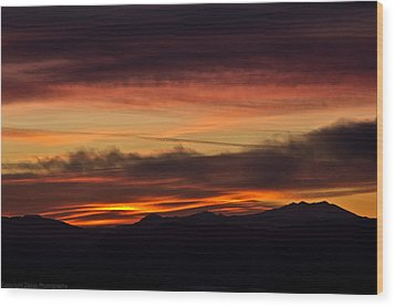 Morning Paint Wood Print by Edward Dasso