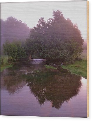 Morning Reflection Wood Print by Karen Grist