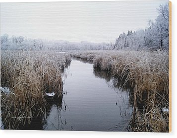Wood Print featuring the photograph Morning Rime by Steven Clipperton