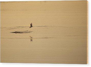 Morning Ritual Wood Print by Melany Sarafis