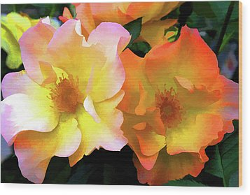 Morning Roses Wood Print by Brian Davis