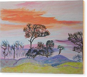 Morning Skies  Wood Print by Meryl Goudey