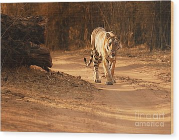 Wood Print featuring the photograph Morning Stroll by Fotosas Photography