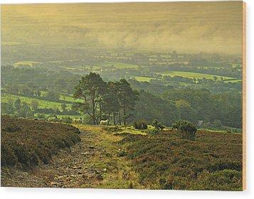 Morning Stroll Wood Print