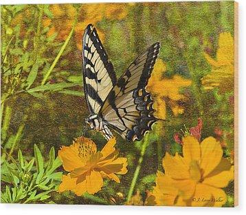 Morning Tiger Swallowtail Wood Print by J Larry Walker