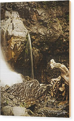 Wood Print featuring the photograph Morrell Falls 3 by Janie Johnson