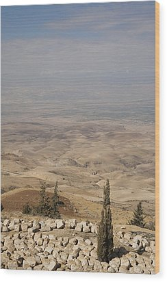 Moses First Saw The The Holy Land Wood Print by Taylor S. Kennedy