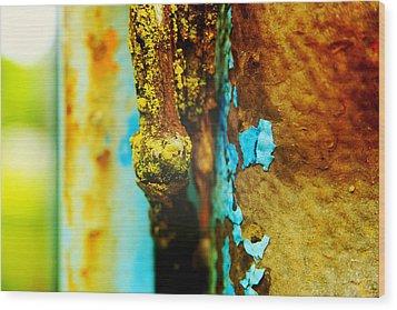 Moss And Rust II Wood Print by Toni Hopper