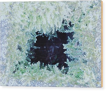 Wood Print featuring the photograph Moss Geode by Renee Trenholm