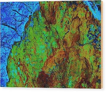 Moss On Rock Wood Print by Helen Carson
