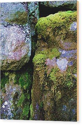 Moss On Rocks Wood Print by Bridget Johnson