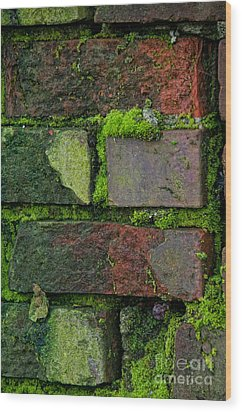 Wood Print featuring the digital art Mossy Brick Wall by Carol Ailles
