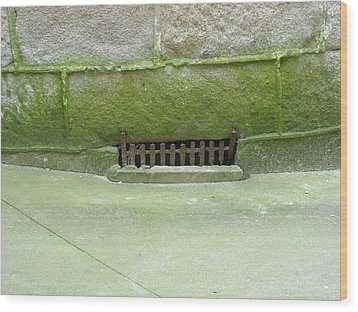 Wood Print featuring the photograph Mossy Grate by Christophe Ennis