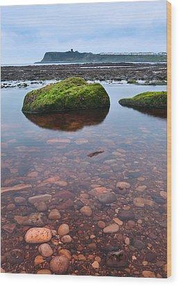 Mossy Rock Wood Print by Svetlana Sewell