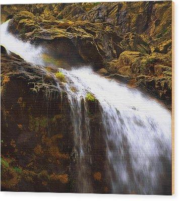 Mossy Rocks Wood Print by Thomas Born
