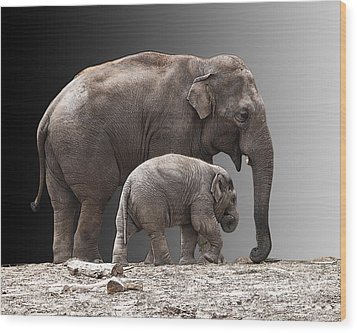 Mother And Baby Wood Print by Sheila Laurens
