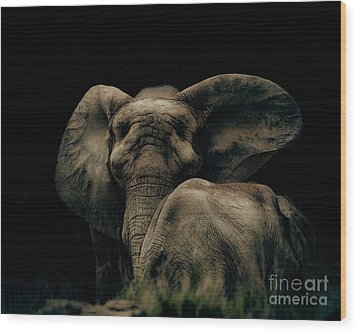 Mother And Child Wood Print by Arne Hansen