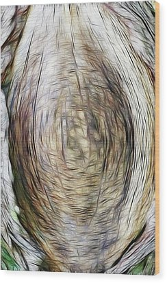 Mother Earth Wood Print