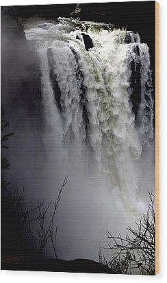 Mother Nature's Roar Wood Print