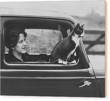Motoring Cat Wood Print by Fox Photos