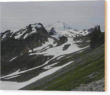Wood Print featuring the photograph Mount Baker by Karen Molenaar Terrell