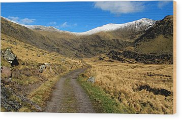 Wood Print featuring the photograph Mount Brandon by Barbara Walsh