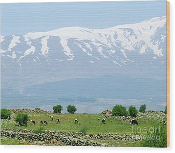 Mount Hermon Wood Print by Issam Hajjar