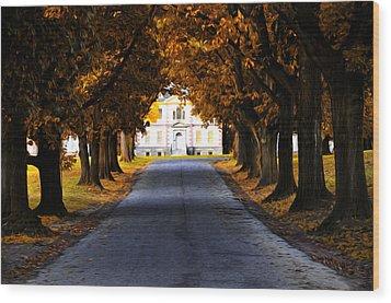 Mount Pleasant Mansion - Philadelphia Wood Print by Bill Cannon