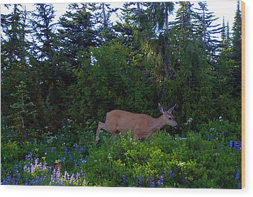 Mount Rainier Deer Wood Print by Lynn Bawden