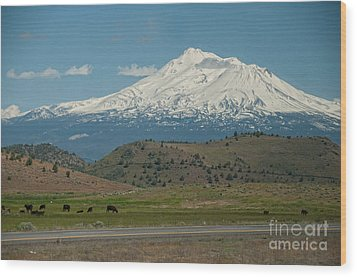 Mount Shasta Wood Print