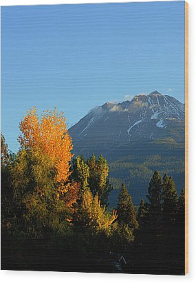 Mount Shasta Fall Wood Print by Lynn Bawden