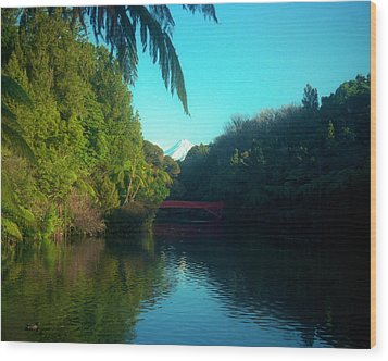 Wood Print featuring the photograph Mount Taranaki Aka Mt Egmont New Zealand by Mark Dodd