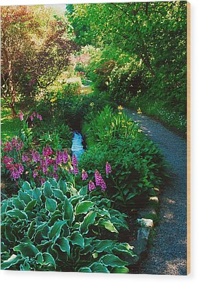 Mount Usher Gardens, Co Wicklow Wood Print by The Irish Image Collection